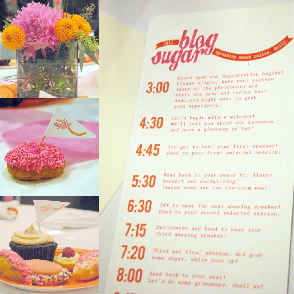 Blog Sugar 2011