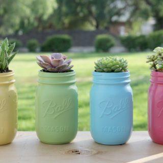 DIY Succulent Jars