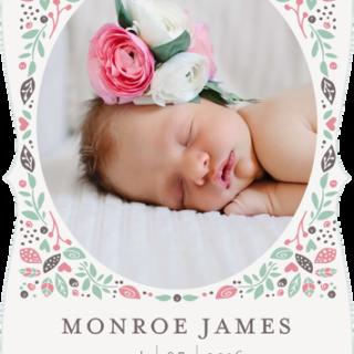 Introducing: Monroe James Baltimore